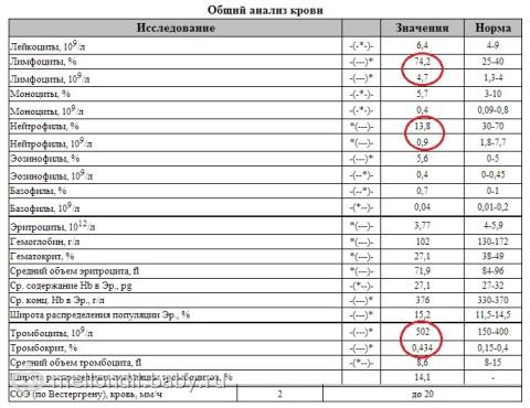 Тромбоциты повышены у беременной о чем это говорит 84