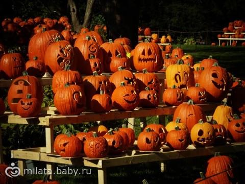 Halloween не за горами)))несколько фоток из наших прогулок))