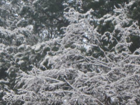 Зимнесказочная погода)