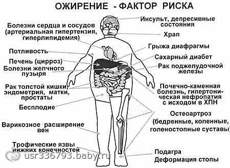 Диета и фитнес для похудения результаты