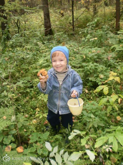 собирать в лесу опят-просто радость для ребят!