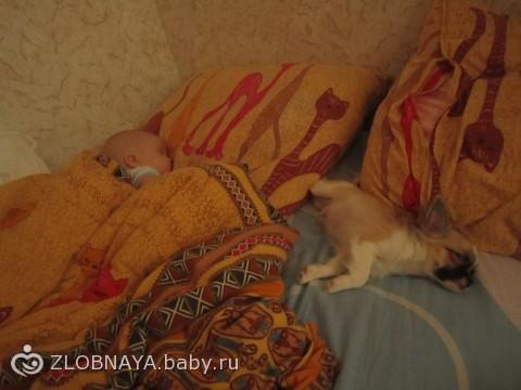 вот так мы спим))