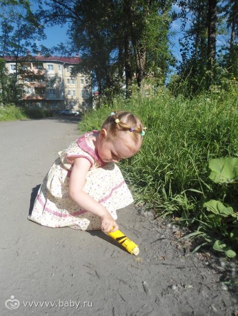 прогулки по нашему лесу. фото.
