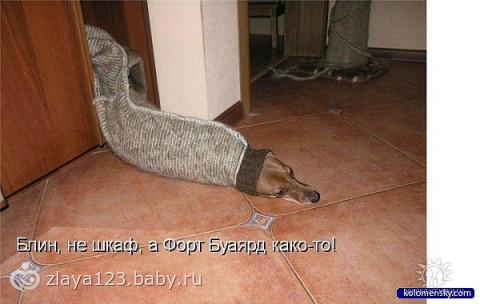 Подружкам милым)))