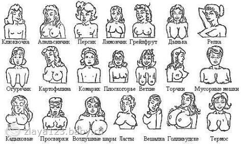 luchshee-russkoe-grudi-kak-dinki-porno