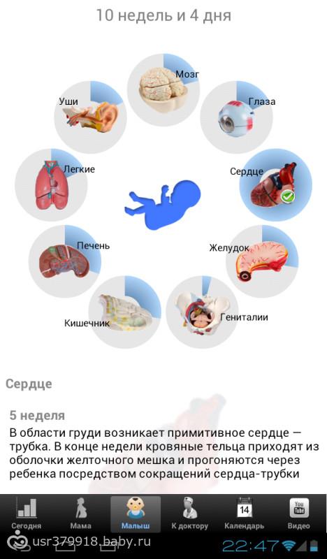 Приложение я беременна для андроид